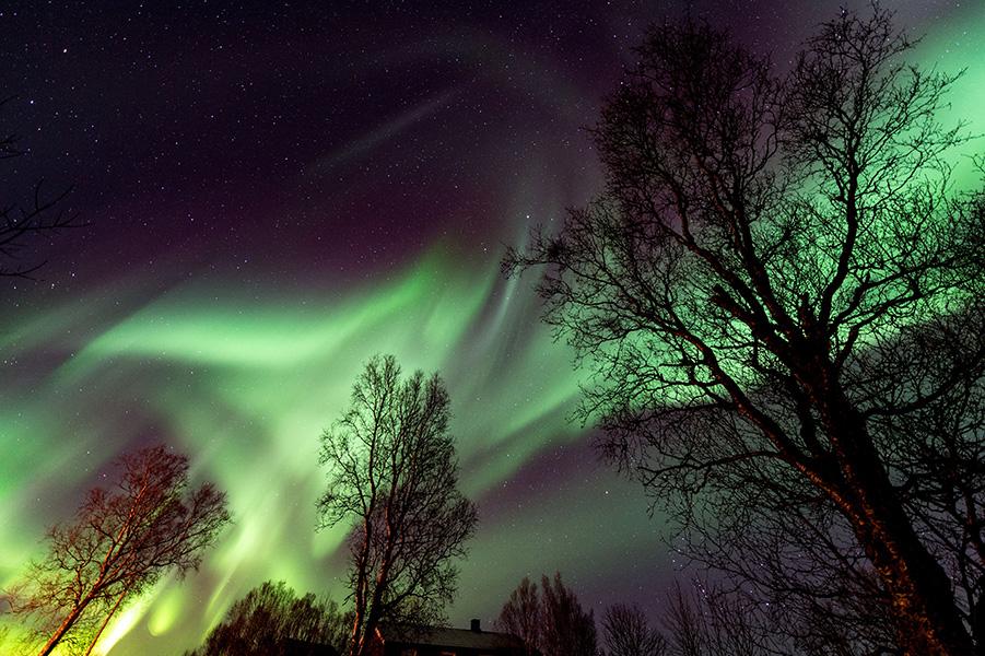 NORVEGE. ILE DE SENJA. AURORES BOREALES//NORWAY. SENJA  ISLAND. NORTHERN LIGHTS